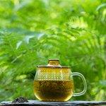Kinto Thee-mug