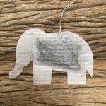 olifant - geboorte