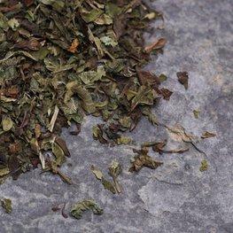 Citroenmelisse (40gr.)